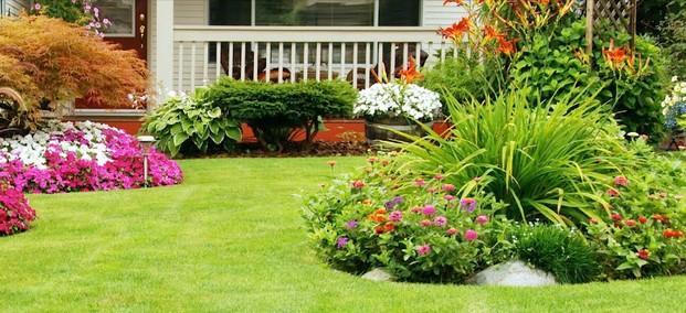 Jardineros.De jardines, de comunidades, de piscinas y más
