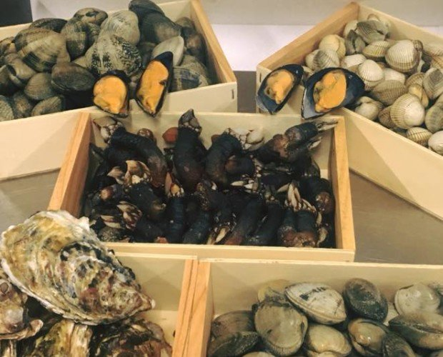 Cajas de marisco. Alguno de nuestros productos