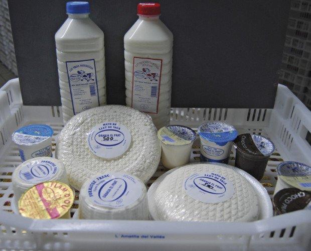 Productos lácteos. Leche, queso y yogur
