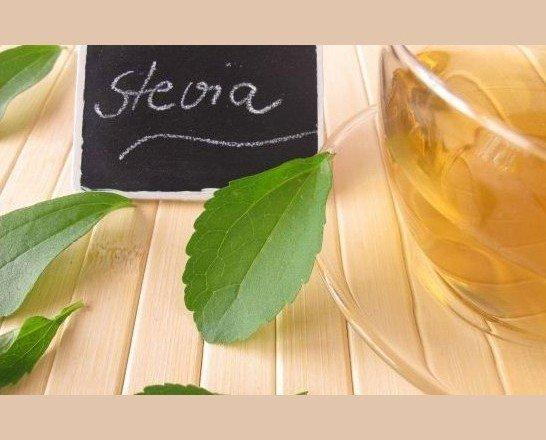 Stevia. Endulzante natural