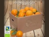 Naranjas Ecológicas