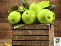 Limones Verdes Ecológicos