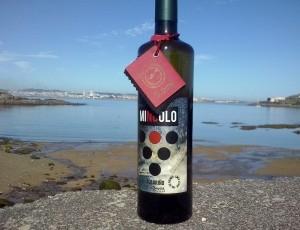 10% de descuento comprando vino Albariño Mingolo