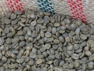 Envío gratis comprando café verde arábica de altura