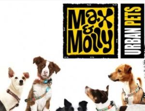 50% de descuento en Liquidación correas de marca Max & Molly