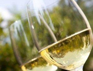 Descuento del 30% en vino blanco Rioja