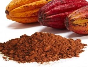 Envío gratis comprando cacao puro, en polvo