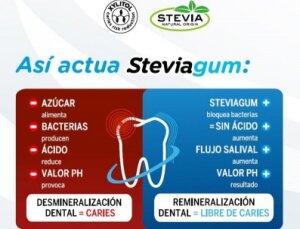 Steviagum Fresa - chicle higiene bucal