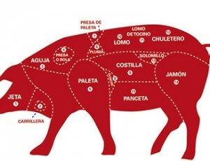 Cerdo - Importación y Exportación