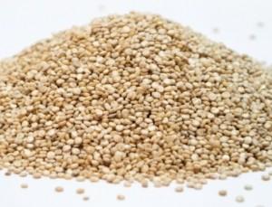 Envío gratis comprando quinoa orgánica calidad certificada