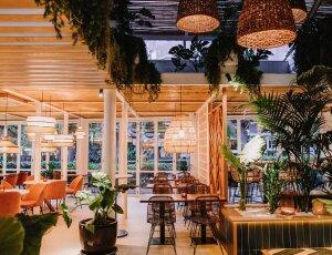 10% de descuento comprando la silla FAVORIT SIN PINTAR