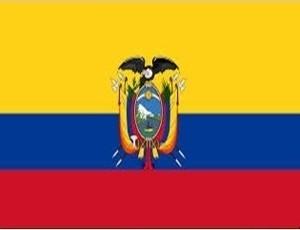 10% de descuento en mudanzas hacia Ecuador